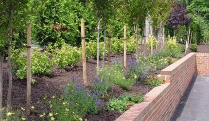 Richmond, VA Landscape Contractors