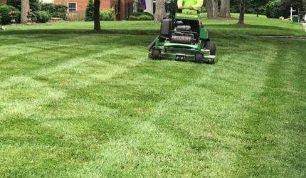 Midlothian, VA Lawn Mowing Service