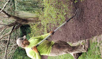 Richmond, Virginia Landscape Maintenance