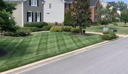 Midlothian, Virginia Landscape Maintenance Company