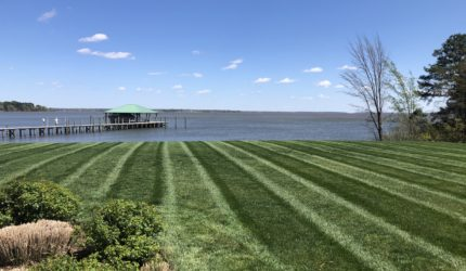 Williamsburg, Virginia Landscape Maintenance Services