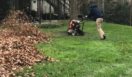 Midlothian, Virginia Landscape Maintenance