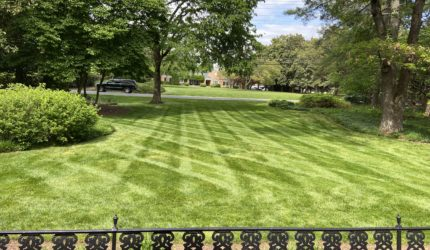 Henrico, Virginia Landscape Maintenance Service