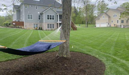 Henrico, Virginia Landscape Maintenance Companies