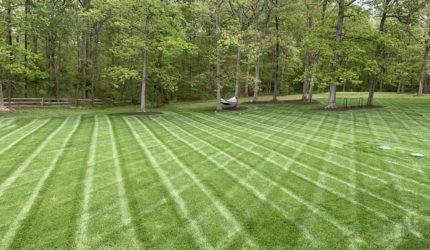 Henrico, Virginia Landscape Maintenance Company