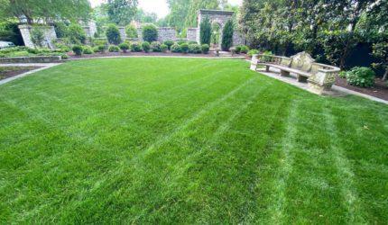 Midlothian, VA Lawn Maintenance Service